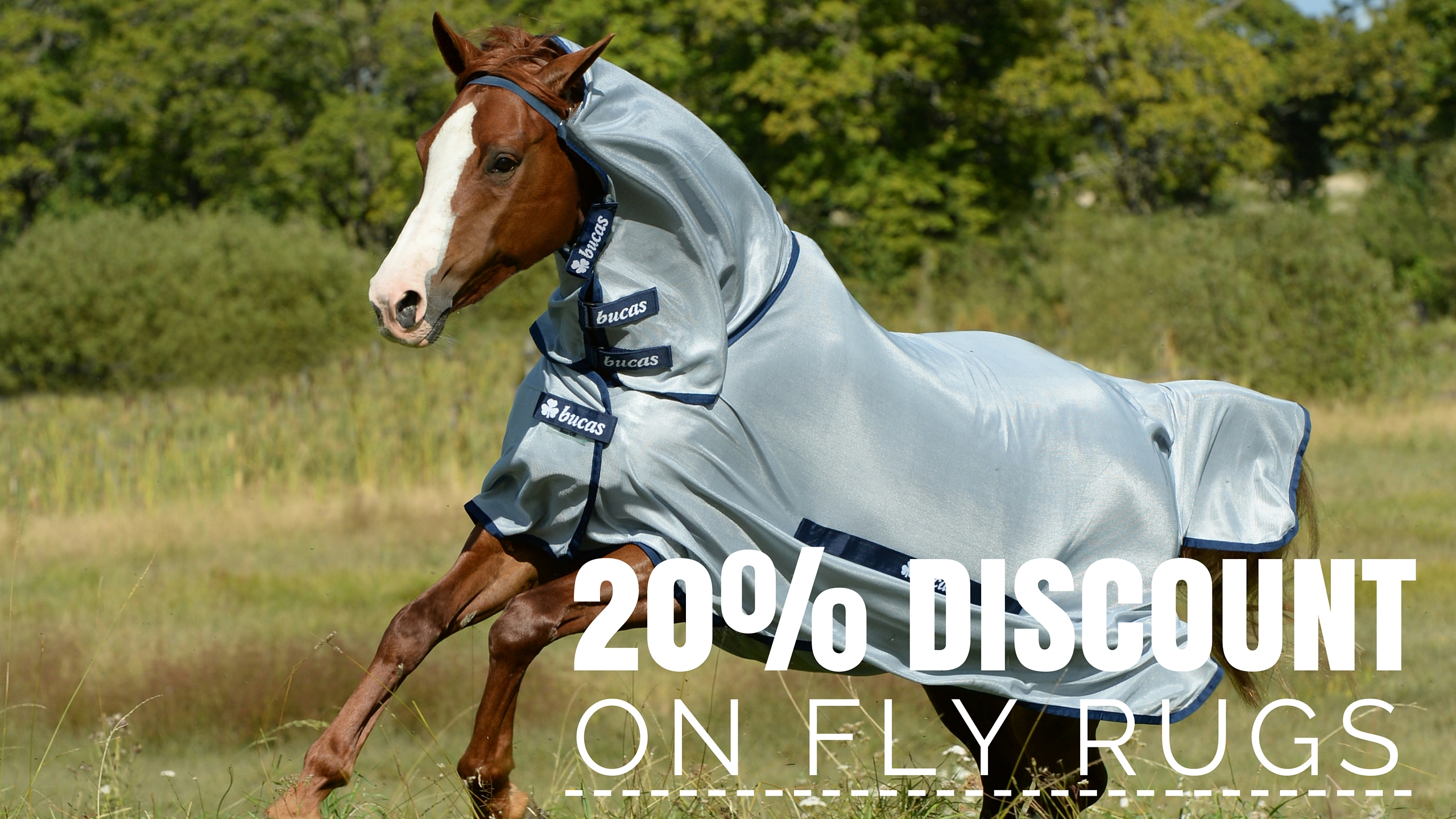 20% discount on Fly Rugs!