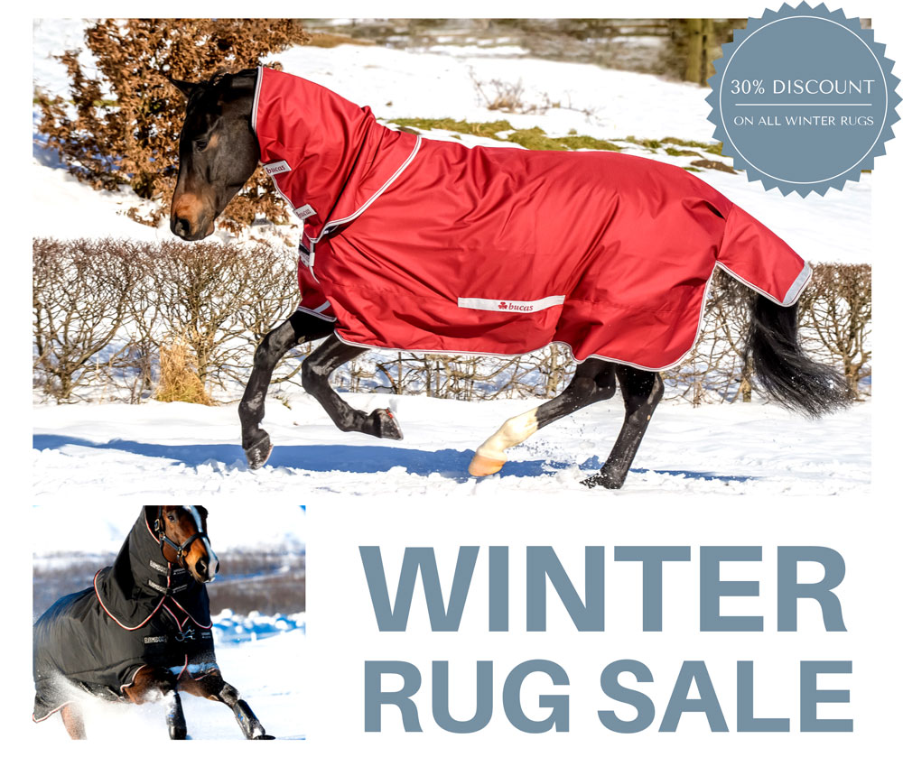 Winter rug sale