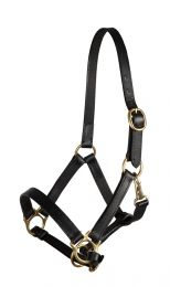 Pfiff leather foal halter