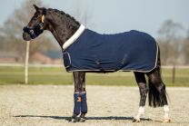 HB Showtime Blue Moon Show Rug