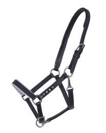 QHP leather foal halter Parla
