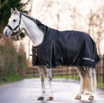 Back on Track Brianna Turnout Rug