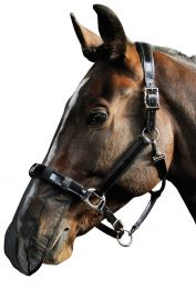 Harry's Horse nose net black