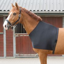 Harry's Horse lycra chest protector