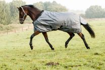 Catago Preformance winter rug grey