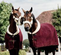 Kentucky Fleece Show Rug Heavy Bordeaux