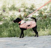 Kentucky Dog Coat Waterproof Coral