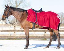 QHP Riding Rug Fleece Ornament