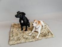 Kentucky Dog Bed Fuzzy Blanket To Go