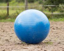 QHP Horse football Blue 80 cm