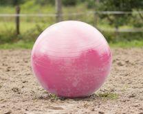 QHP Horse football 100 cm