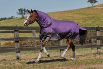 Weatherbeeta ComFiTec Plus Dynamic Detach-a-Neck Medium 220g Purple/Black