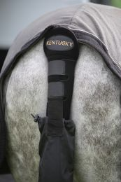 Kentucky tail guard & tail bag