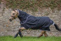 Amigo Bravo 12 Pony Plus Lite