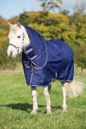 Amigo Hero ACY pony Medium 200gr Atlantic Blue & Ivory