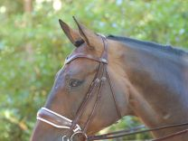 Dyon double bridle with large crack noseband brown, white padding