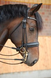 Dyon rolled double bridle with large crack noseband black