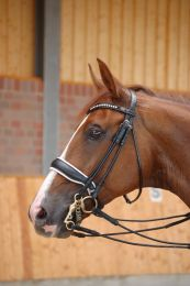 Dyon rolled double bridle with large crack noseband, white padding