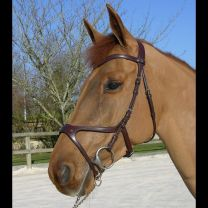 Dyon X-fit anatomic bridle
