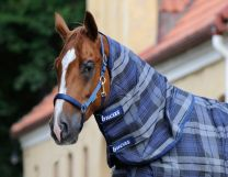 Bucas Celtic Stable Combi Neck Tartan