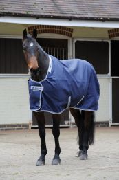 Bucas Celtic Stable Light Navy