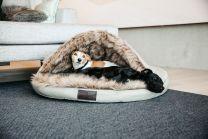 Kentucky Dog Bed Igloo