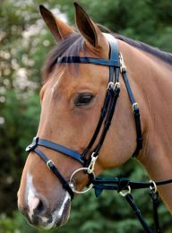 Dyon Working Collection bridle with Snaps