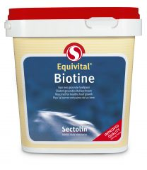 Sectolin Equivital Biotin