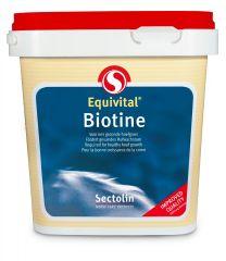 Sectolin Equivital Biotine 1 kg