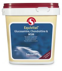 Equivital Glucosamine, Chondroïtine & MSM