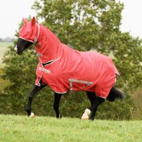 Bucas Freedom Fly Sheet Paradise Pink