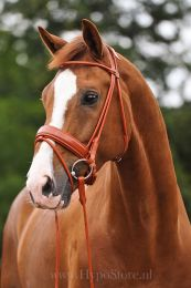 Premiera ''Monaco'' Cognac padded bridle with patent leather noseband, silver buckles