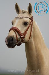 "Premiera ""Athena"" cognac bridle with patent leather noseband, silver buckles"