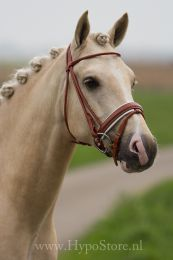Premiera ''Monaco'' Cognac bridle with white padded patent leather noseband, silver buckles