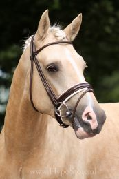 Premiera ''Monaco'' Brown bridle with white padded patent leather noseband, gold buckles