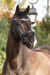 Premiera ''Imperia'' black rolled bridle with crystal browband