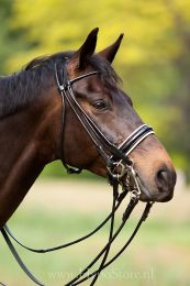 Premiera ''Rome'' Black rolled double bridle with white padded 4.5 cm patent leather noseband
