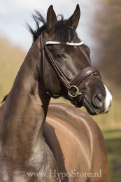 Premiera ''Imperia'' brown rolled bridle with crystal browband, gold buckles
