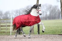 MASTER winter rug metallic red 150g
