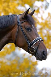 Premiera ''Monaco'' Black bridle with white padded patent leather noseband, silver buckles