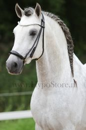 "Premiera ""Novara"" Black rolled bridle with drop patent leather noseband, gold buckles"