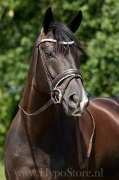 """Premiera """"Valentia"""" brown bridle with white padding and crystal browband, silver buckles"""