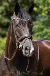 """Premiera """"Valentia"""" brown bridle with crystal browband, silver buckles"""