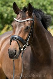 "Premiera ""Valentia"" black bridle with crystal browband, silver buckles"