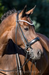Premiera ''Levanto'' Black double bridle with crystal browband