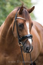 """Premiera """"Athena"""" black bridle with patent leather noseband, gold buckles"""