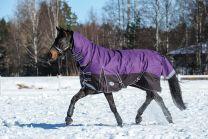 Weatherbeeta ComFiTec Plus Dynamic Combo Heavy 360g Purple/Black
