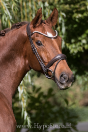 "Premiera ""Latina"" brown anatomic bridle with patent leather details"