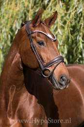 "Premiera ""Latina"" brown anatomic bridle with white padding and patent leather details"