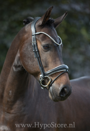 "Premiera ""Latina"" black anatomic bridle with white padding and patent leather details"